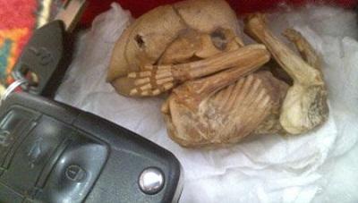 پیکره کشف شده در کرمان که به کوتوله ها نسبت داده می شود