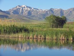 کوههای کرمان