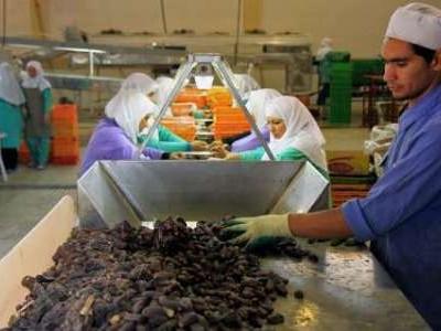 عضو اتاق بازرگانی کرمان: تشکل هایی برای بسته بندی و برند تشکیل شود
